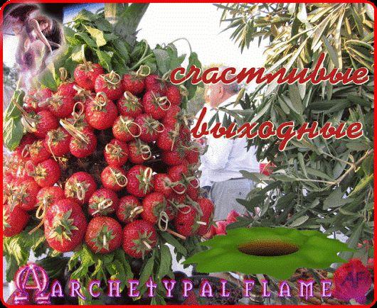 Archetypal Flame - счастливые выходные