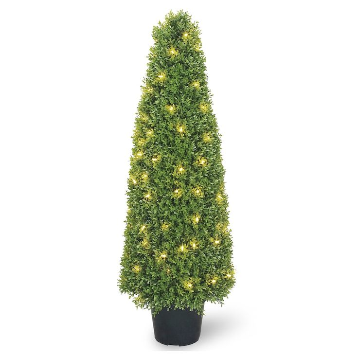 """#Christmas Buy for National Tree Company Pre-Lit 48"""" Artificial Boxwood Tree, Green for Christmas Gifts Idea Promotions . Prior to deciding to produce a abrasive listing of everything required to acquire this Christmas . Planning precisely what you are going to buy, determining simply how much you are going to commit, al..."""