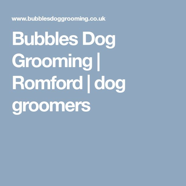Bubbles Dog Grooming | Romford | dog groomers