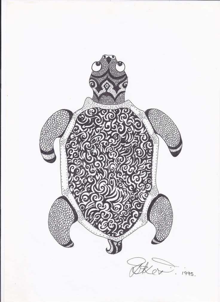 turtle mr. squiggle in black ink