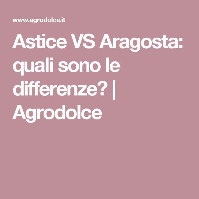 Astice VS Aragosta: quali sono le differenze?   Agrodolce