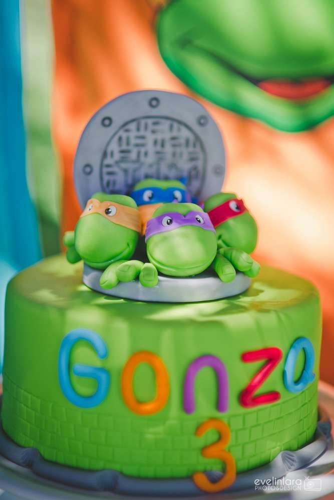 Ninja Turtles Birthday Party Ideas