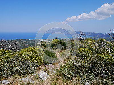 Spring landscape with yellow flowers, Polyrinia,Crete,Greece