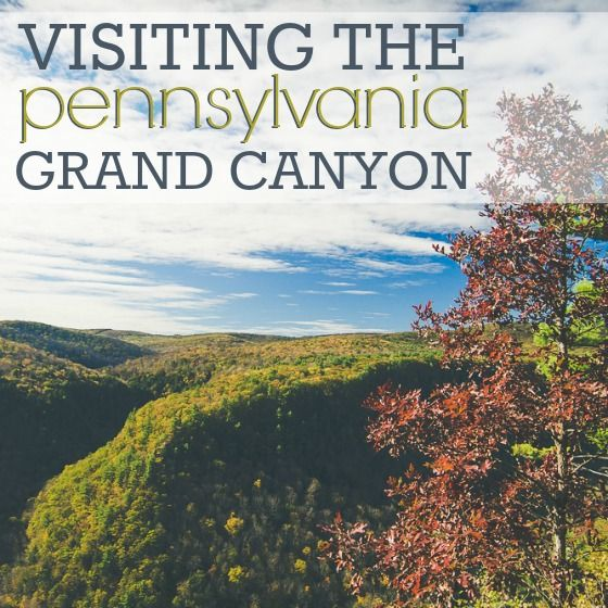 Situated in the Pennsylvania Appalachians, the Grand Canyon of Pennsylvania and surrounding area is a hidden gem. The area offers a plethora of hiking, biking, camping, and spectacular views. The Grand Canyon truly comes alive in the Fall and makes a great destination for families that love the ou