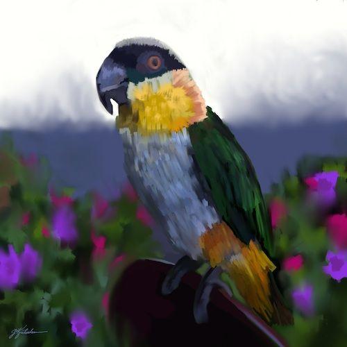 http://www.jkretschmer.com/pages/30in30.html  Santana, iPad Painting by Jennifer Kretschmer