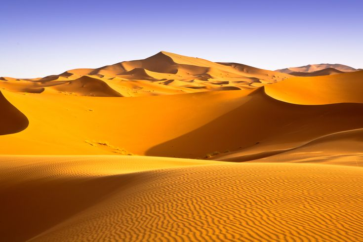 This is the image many people have of the Sahara: a vast sea of sand dunes. The terrain is actually quite varied. CREDIT: apdesign | ShutterStockAfrican Savanna, Vast Sea, Africa Beautiful, Northern Africa, Sahara Deserts, Largest Deserts, Beautiful Places, Dry Skin, Sands Dunes