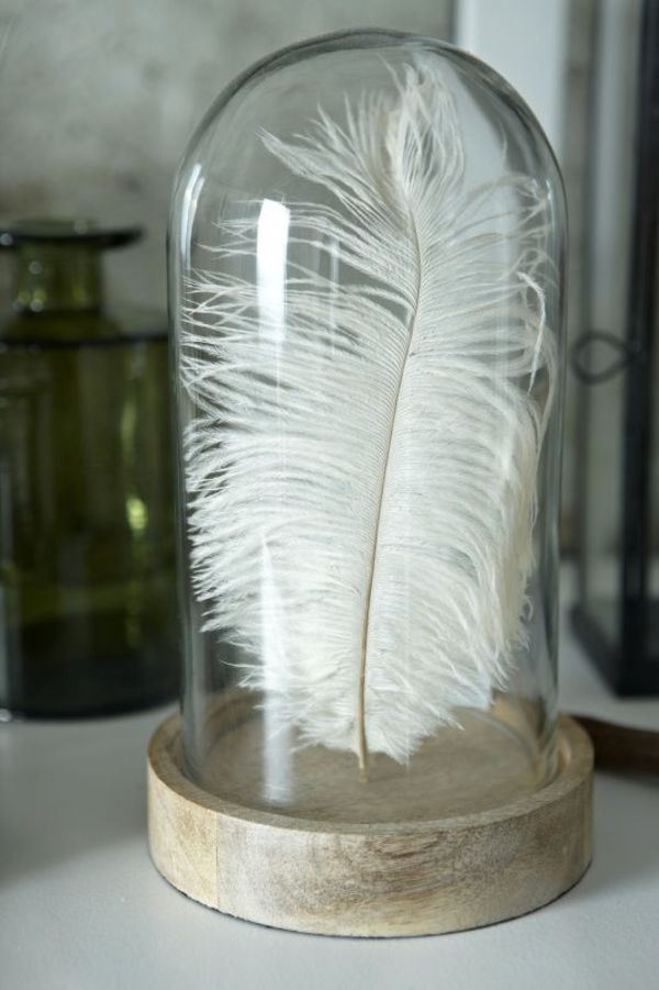 Just a feather!