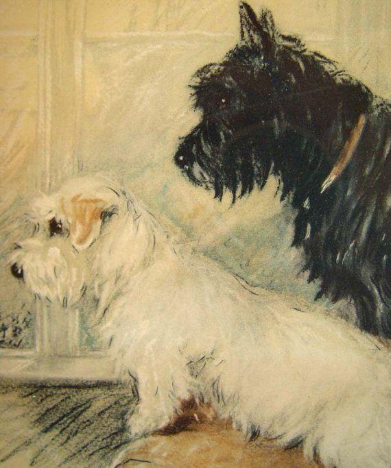 Scottie w Sealyham Terrier Lucy Dawson