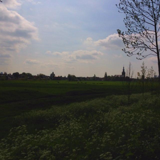 Skyline Overschie, Rotterdam!