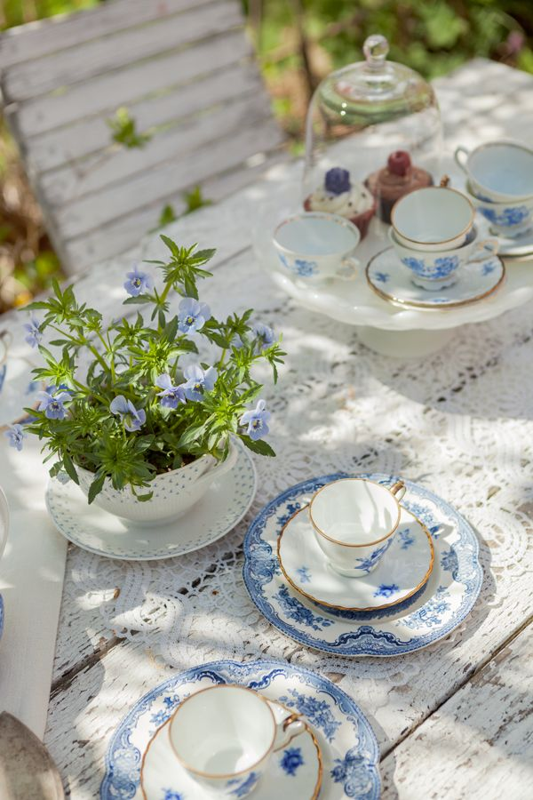 Nice effect with the lace tablecloth over the weathered wood. The pretty blue plant matches the dainty blue pattern on the cups too - nice #entertaining