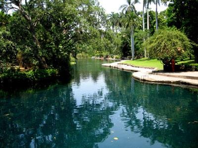 Las Estacas, Cuernavaca, Mexico. Where the original Tarzan movie was made