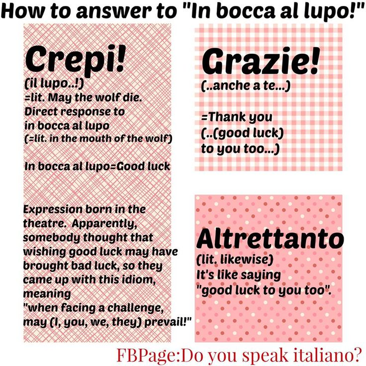 Learning Italian Language ~ Come rispondere a un In bocca al lupo