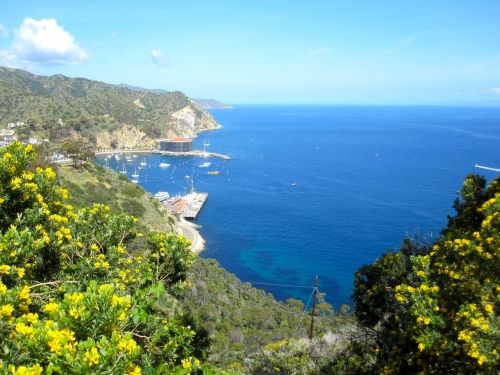 Trans-Catalina Trail: Avalon to Black Jack (my kids have done this during their summers at Catalina Island Camp)