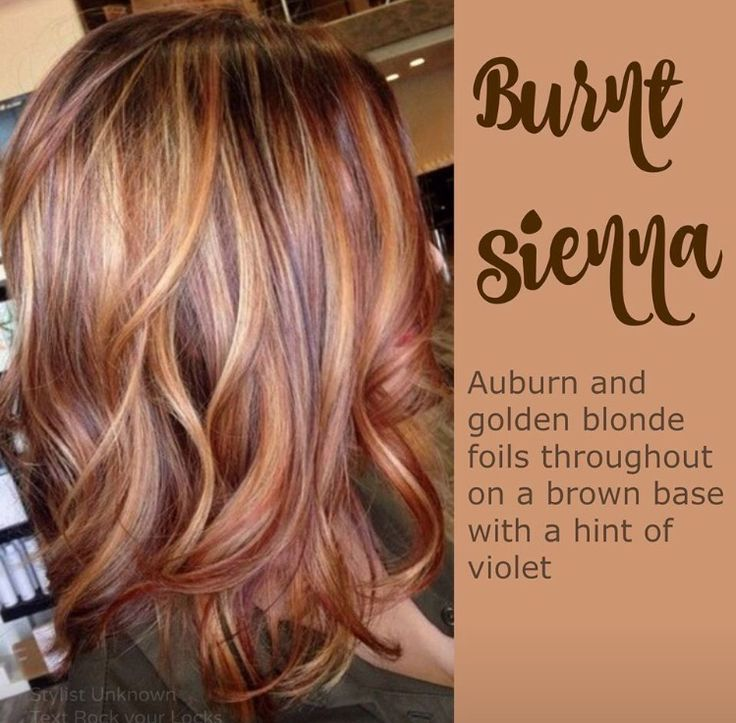 Auburn hair with golden highlights/ fall 2015 hair color