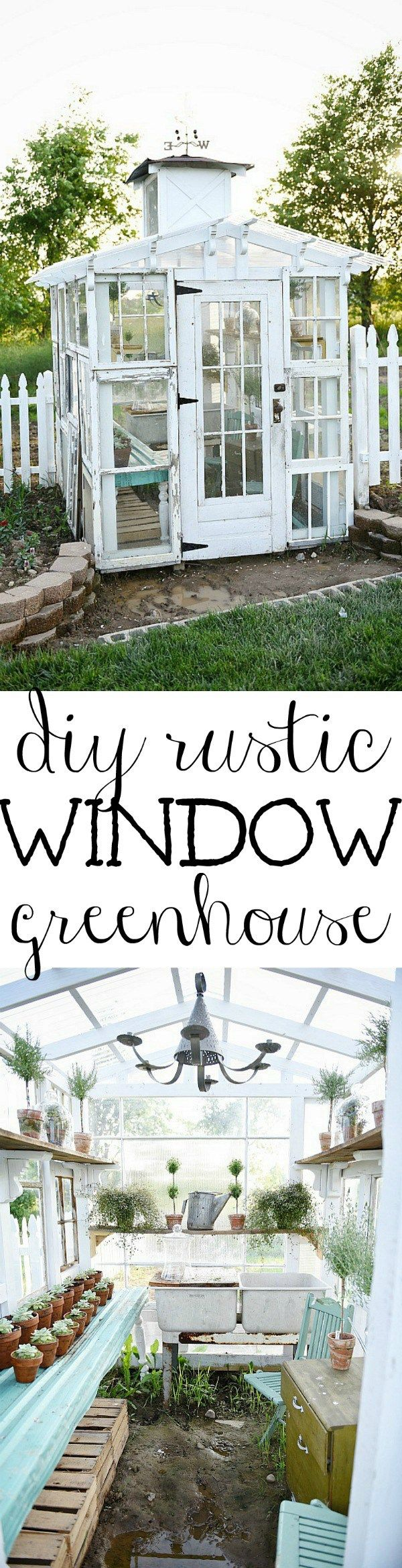 Rustic Window Greenhouse - awesome looking greenhouse made using salvaged windows - via Liz Marie Blog