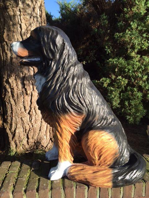 Berner Sennenhund - Lebensgroß günstig online kaufen