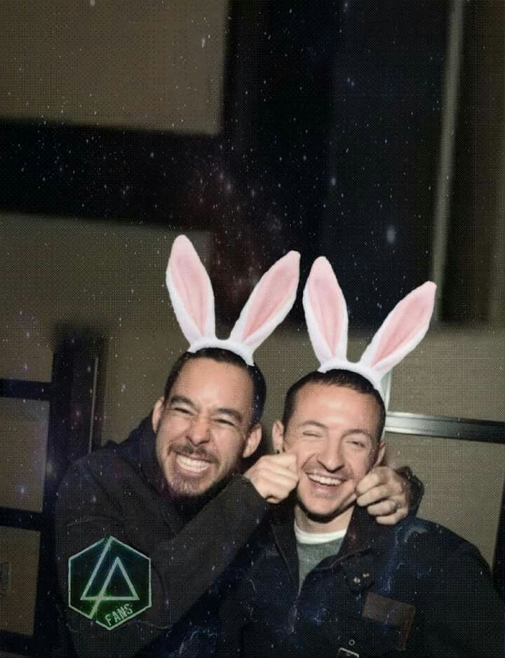 Mike and Chester, i never thought before that bunny ears will suit them. Forever in our hearts <3
