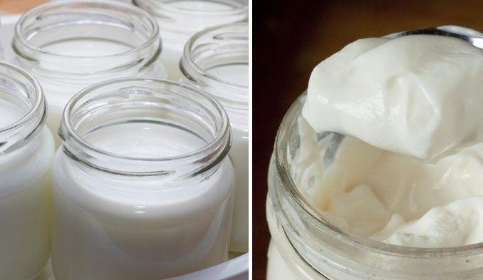 Kto by nemiloval domáce výrobky? Oto skôr, keď sú to veci, ktoré si doma nepripravujeme bežne. Medzi takéto potraviny patrí aj kvalitný domáci jogurt, ktorý nie je po tvorený tekutý, neleje sa zneho voda anie je zrazený. Naozaj dobrý krémový ahustý báječný jogurt je zázrakom prírody. Máte doma mlieko? Šup ho vyskúšať. Budete potrebovať: 1 liter plnotučného mlieka 1 biely
