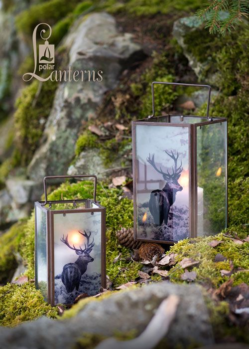 280613 Deer lyhty, 35cm ja 48cm / Deer Lanterns