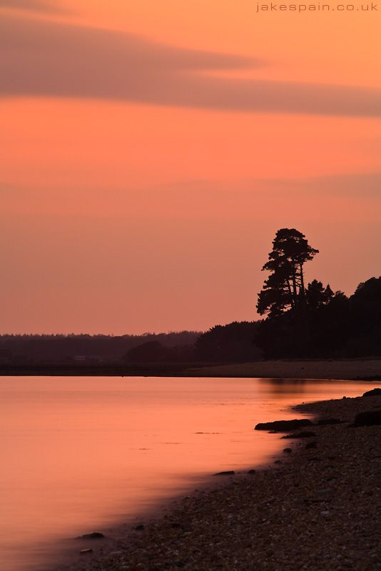 Lepe, New Forest.