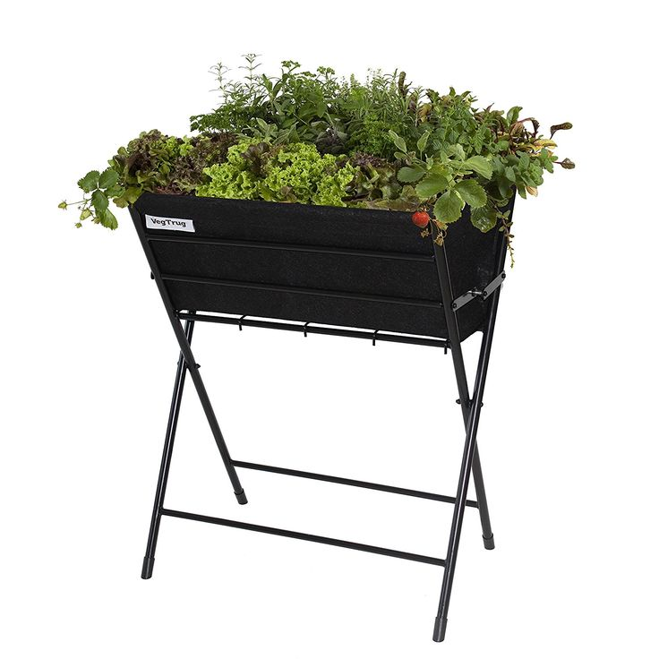 VegTrug POPKT012BK VegTrug Poppy with Black Felt Planter - Black: Amazon.co.uk: Garden & Outdoors