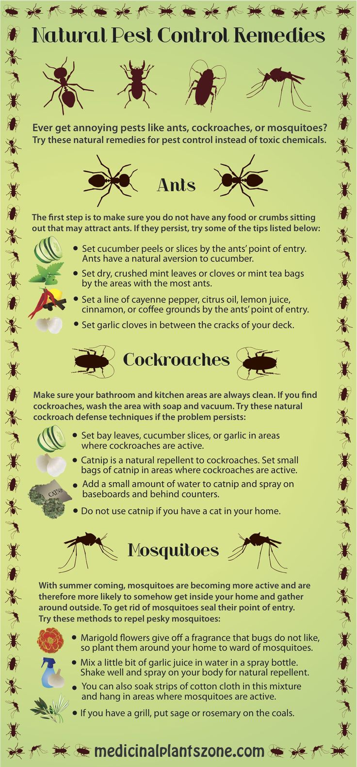 To Repel Pests In Or Around Your Home, Try These Natural Pest Control  Remedies To Deter Mosquitoes, Ants And Cockroaches From Coming Near.