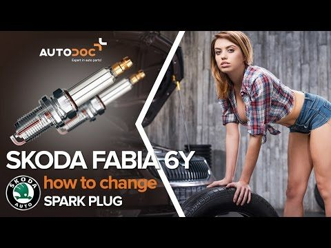 Skoda Octavia II. Headlight bulb replacement step by step