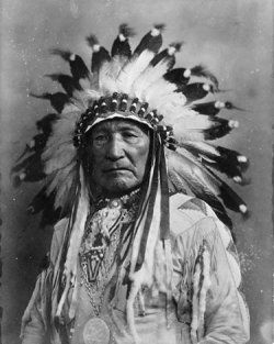 One of the most iconic symbols of Native American culture is the headdress. Not all tribes wore headdresses. But for those that did, Native American...