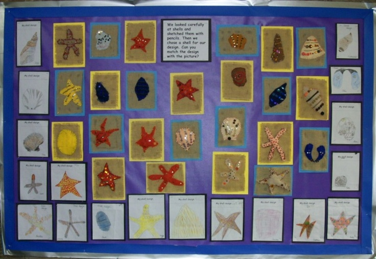 Exploring shells and the seaside display - Draycott & Rodney Stoke CE First School
