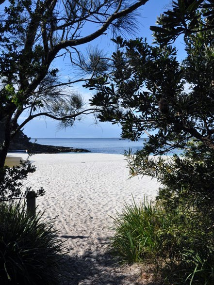 The White Sands Walk in Jervis Bay National Park (Image: Beth Boughton/DECCW) NSW Australia