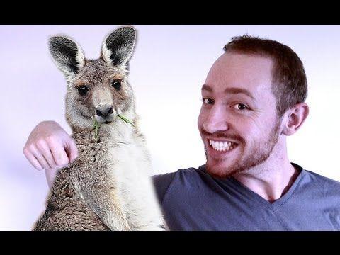 Aussie Myths on Australia Day!