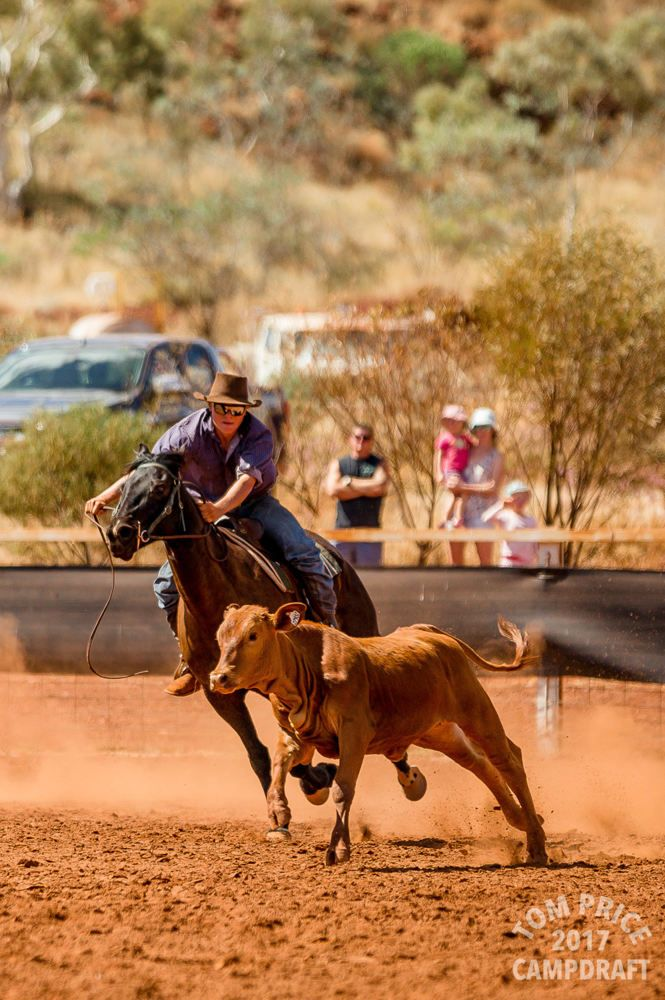 Check out the photos from the 2017 Tom Price Campdraft by Felicity Ford Photography