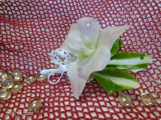 Мастер-класс Лепка: МК по цветку орхидеи дендробиум. Фарфор холодный 8 марта, День рождения. Фото 1