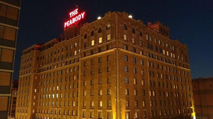 The very first Peabody Hotel opened in 1869 at the corner of Main and Monroe at a cost of $60000. Rates were $4 a night and included a meal in the first class dining room.  @rlwphillips tells us about the origin of the famous Peabody ducks and how they got tamed by the Ringling Brothers circus animal trainer who then became the first Duckmaster! . Use the link in our bio @memphistypehistory to subscribe and listen via iTunes your favorite podcast app or straight from our blog! . PS: Do us a…