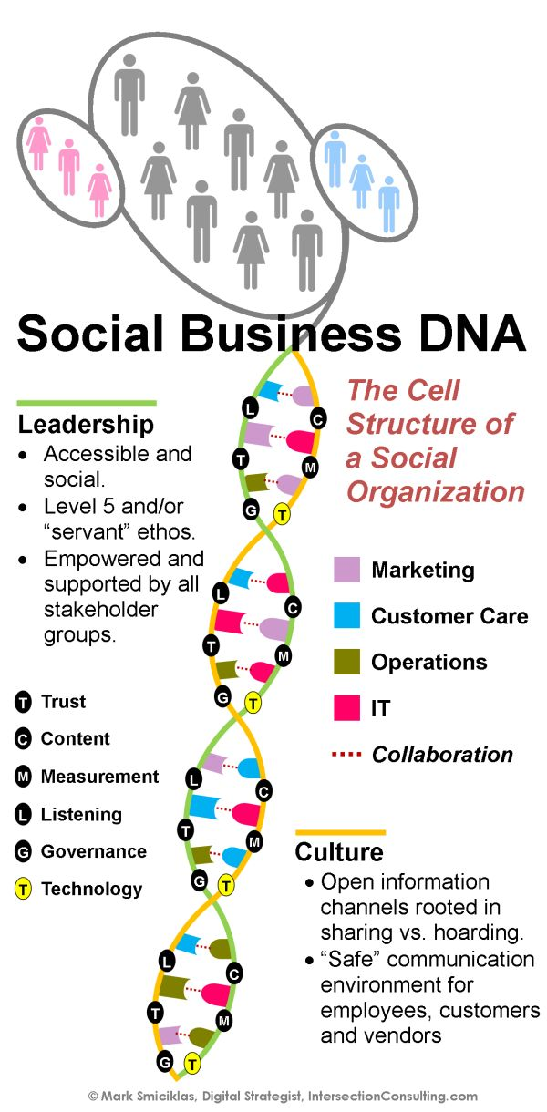 """All networking organization are """"social business"""" ... as well as a lot of retail businesses.  Nice Social Business DNA - Infographic, Maurizio Arata"""