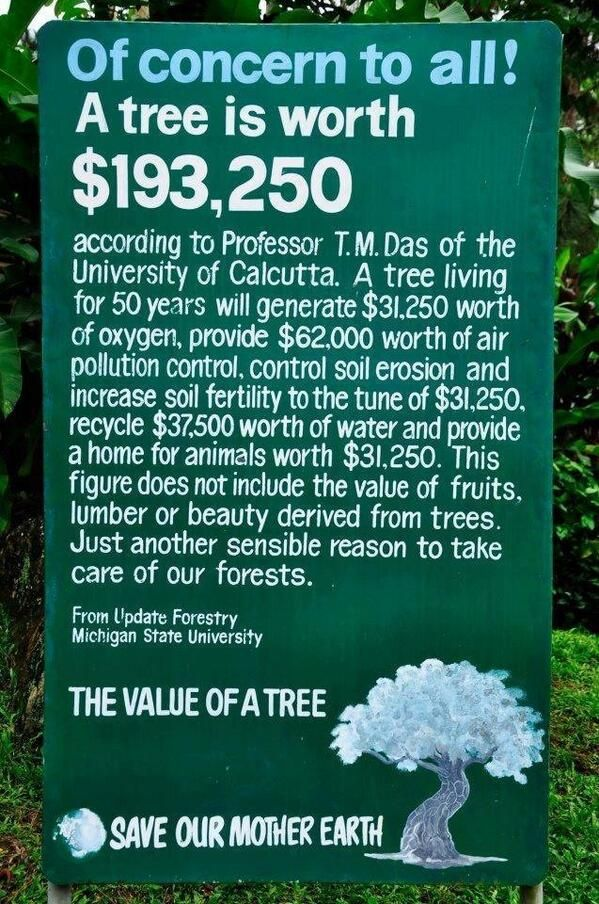 We all know how important trees are to mother nature. Some evenconsider it priceless, while others would simply place a commercial value on them. But have you ever wondered...  How much a tree is really worth?  It may not be a perfect calculation, but it is an important reminderhow Tree's Benefit Us in so many ways :)