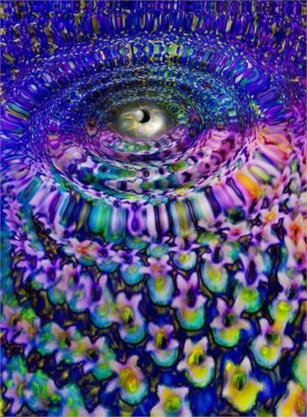 Em Gee's Portfolio : Photo Art.of.Sunflower