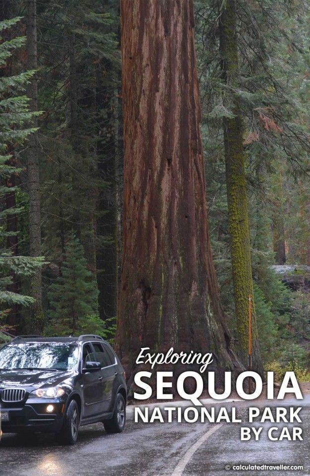 15 Tips for Exploring Sequoia National Park by Car - Calculated Traveller USA !! Parc national en Californie