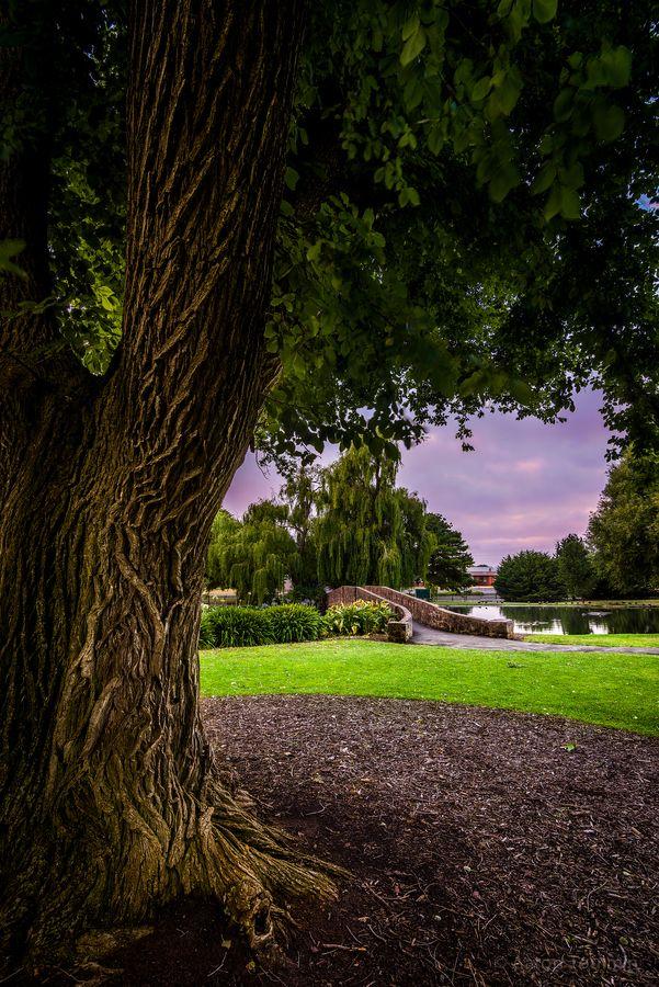 Botanical Gadens by Aaron Toulmin, via 500px Taken at the Warrnambool Botanical Gardens, Victoria Australia