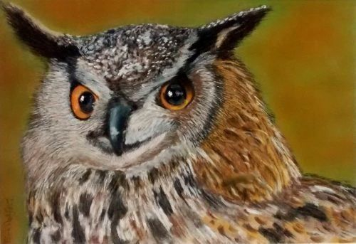 Horned Eared Owl Custom Wildlife Painting