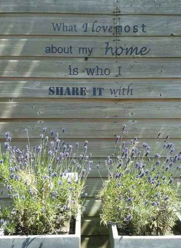 voor in de tuin
