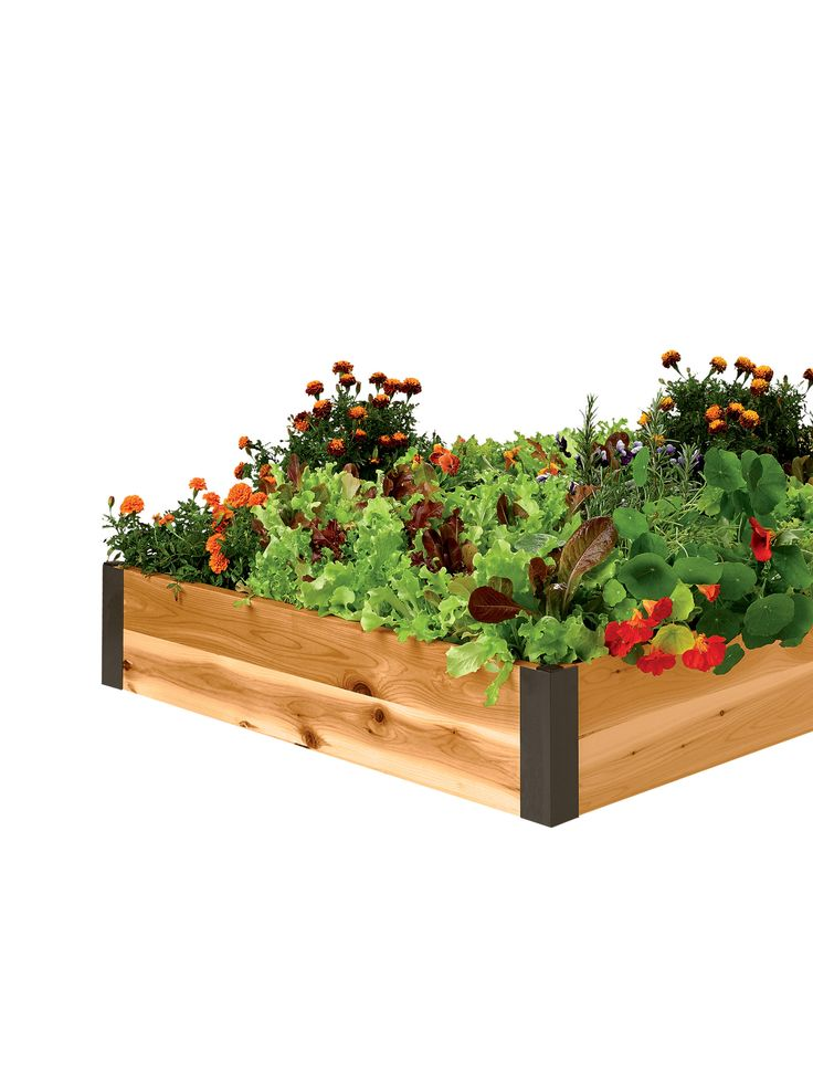 Cedar Raised Beds 3 Ft Raised Bed Gardening Made In Vermont Garden 2015 Ideas Pinterest