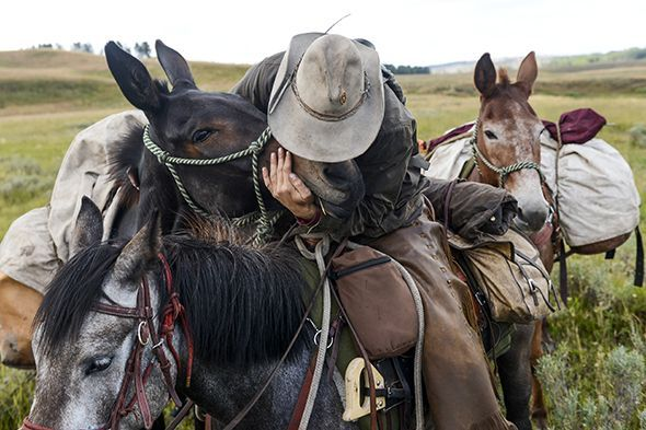 Army Special Forces veteran Ray Knell kisses his mule, Magic, after giving him an ear massage on the trail through Pelican Valley in Yellowstone National Park as he nears the end of his solo, 1,000-mile ride from Lake George, Colorado, to Manhattan, Montana, for the veterans group Heroes and Horses…