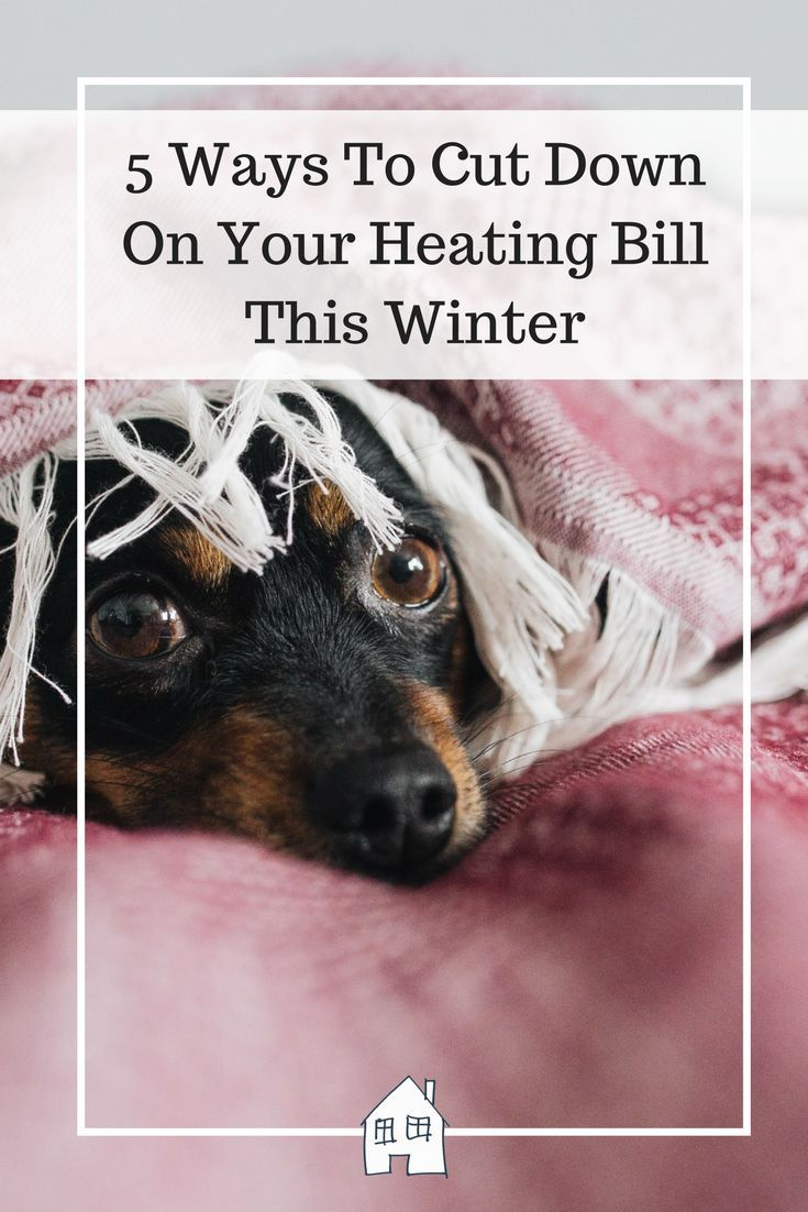 Are you looking to save some money this winter? We have already given you some energy saving tips, but when it comes to heating costs, you may have already resigned yourself to a huge bill come the start of the new year. After all, you need to stay warm right? However, your boiler doesn't need