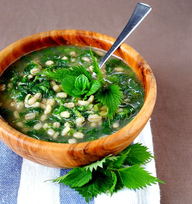 Zuppa di orzo e ortica | http://www.ilpastonudo.it/claudia-renzi/erbaccia-a-chi/zuppa-di-orzo-e-ortica/