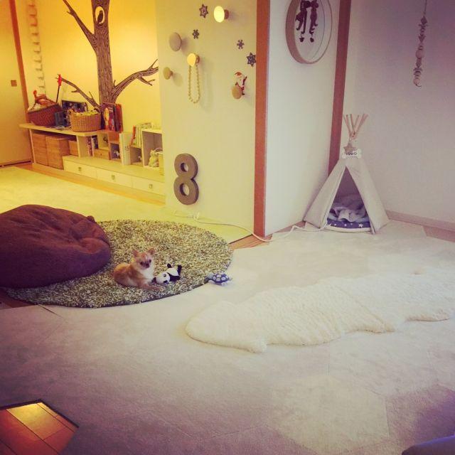 haruhinaさんの、部屋全体,無印良品,照明,ペット,犬,ビーズクッション,ウォールステッカー,ラグ,北欧,マンション,カイボイスン,ティピーテント,bastisRIKE,ミラー壁掛け,ペットと暮らすインテリア,ムートンマット,のお部屋写真