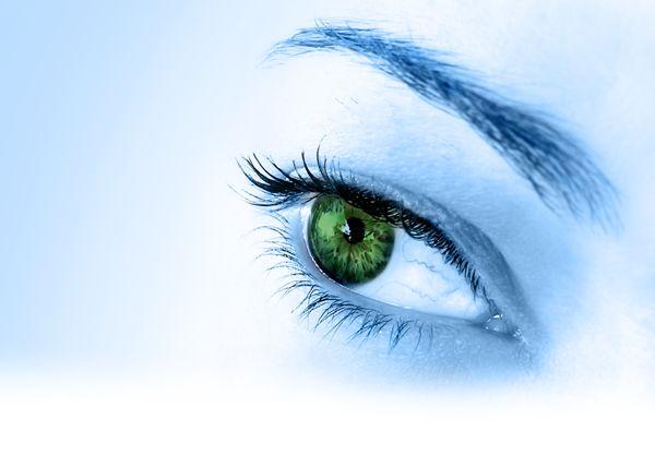 Nutrientes para la visión