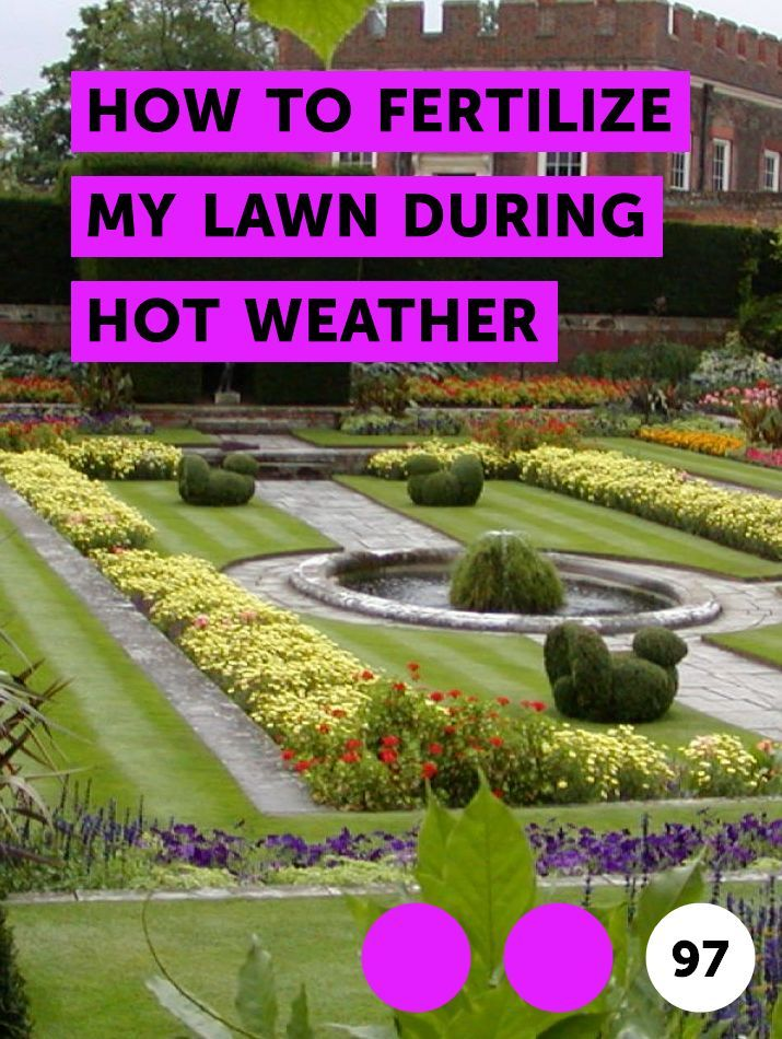 Learn How To Fertilize My Lawn During Hot Weather How To Guides Tips And Tricks Garden Soil Growing Dahlias Planting Vegetables