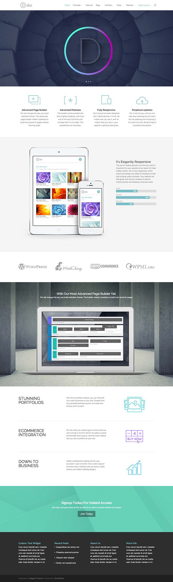 Divi the new theme for your site from Elegant Themes