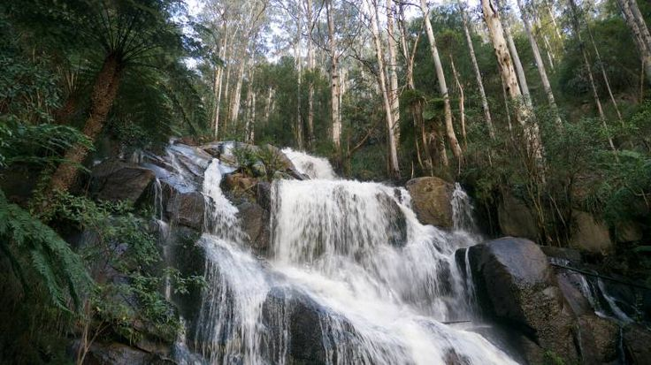Toorongo Falls, as seen from the observation platform. Noojee Gippsland Victoria